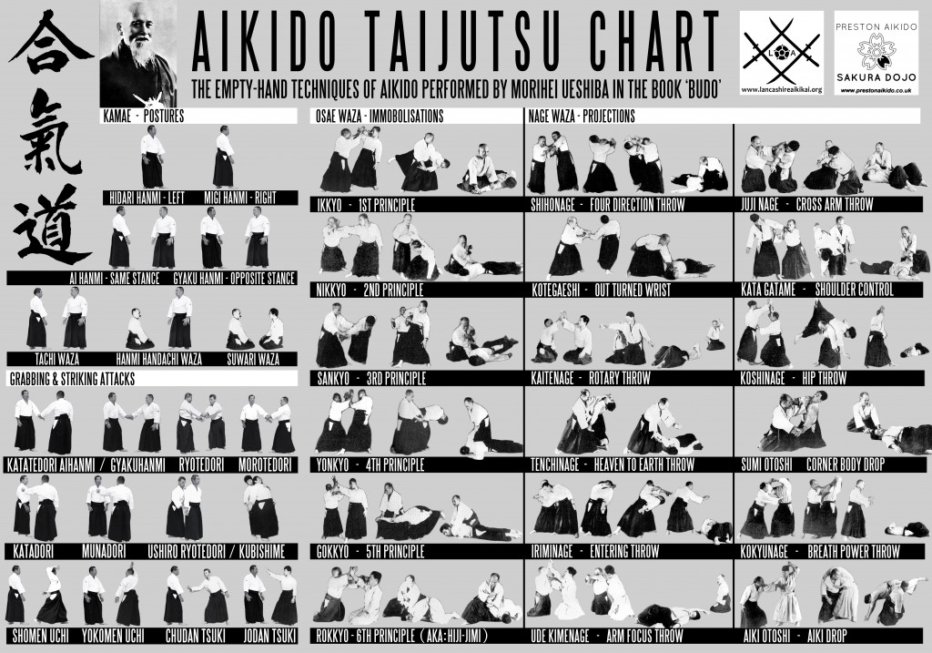 AIKIDO TECHNICAL CHART v 2